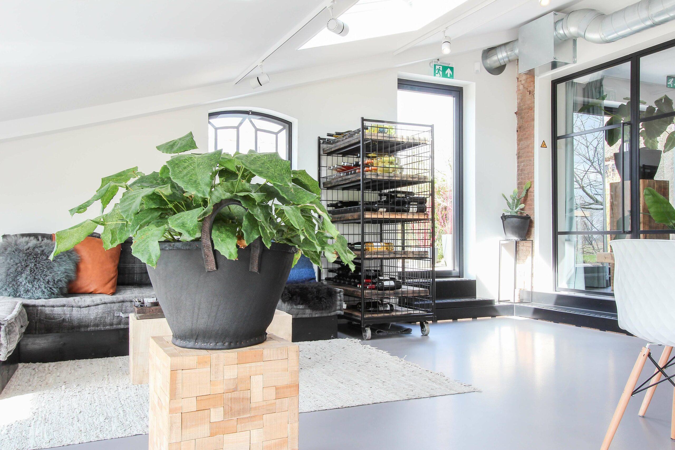 loods10-loungeruimte